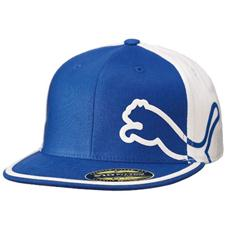 Puma Men's Fitted Monoline Hat