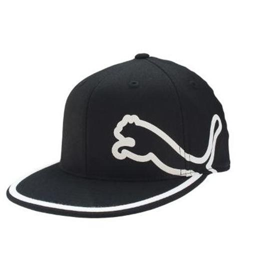 Puma Men's Fitted Monoline Hat